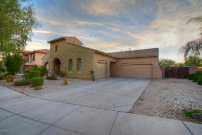 Phoenix Single Family Home For Sale: 27310 N 24th Drive