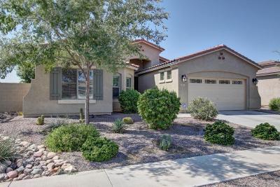 Maricopa County Single Family Home For Sale: 2845 E Santa Fe Court