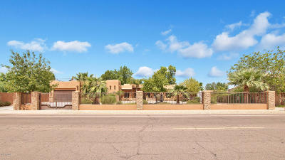 Tempe Single Family Home For Sale: 1014 E Knox Road