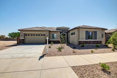 Queen Creek Single Family Home For Sale: 18869 E Carriage Way