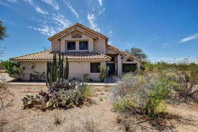Cave Creek Single Family Home For Sale: 5335 E Lone Mountain Road
