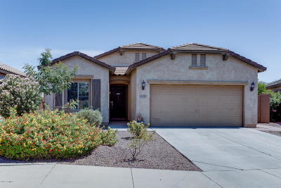 Mesa Single Family Home For Sale: 5041 S Chamberlin