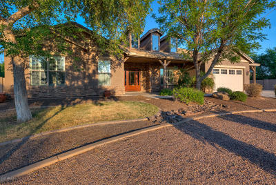 Queen Creek Single Family Home For Sale: 22451 S 201st Street