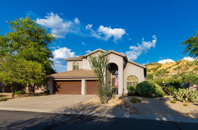 Gold Canyon Single Family Home For Sale: 4809 S Las Mananitas Trail