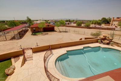 Peoria Single Family Home For Sale: 9125 W Buckskin Trail