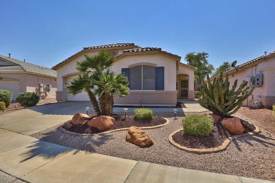 Surprise Single Family Home For Sale: 17692 N Phoenician Drive