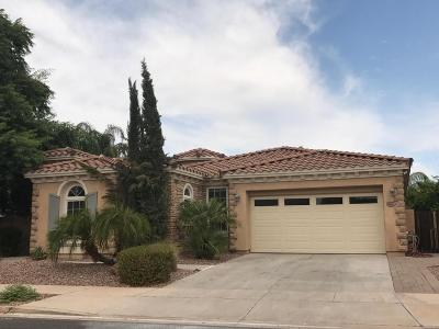 Gilbert Single Family Home For Sale: 4622 E Waterman Street