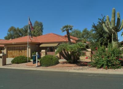 Sun Lakes Single Family Home For Sale: 10922 E Chestnut Drive