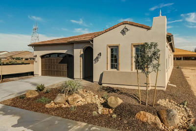 San Tan Valley Single Family Home For Sale: 36882 N Stoneware Drive