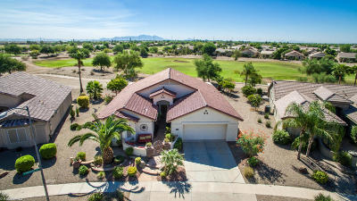 Pinal County Single Family Home For Sale: 2449 E Santiago Trail