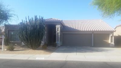 Cave Creek Single Family Home For Sale: 4542 E White Feather Lane