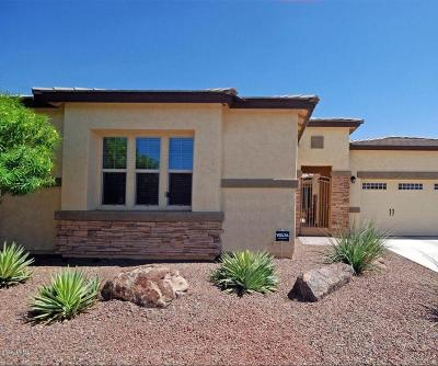 Goodyear Single Family Home For Sale: 17691 W Cottonwood Lane