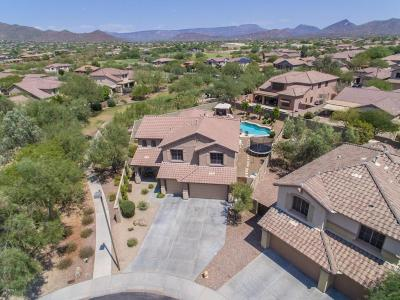 Anthem Single Family Home For Sale: 2102 W Hemingway Court