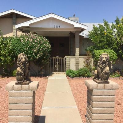 Phoenix Single Family Home For Sale: 3802 W Brown Street