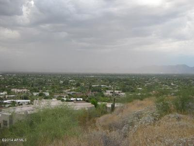 Paradise Valley Residential Lots & Land For Sale: 4608 E White Drive