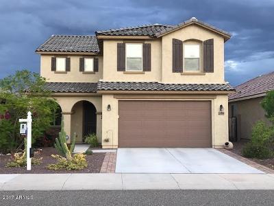 Sun City Single Family Home For Sale: 11924 W Carlota Lane