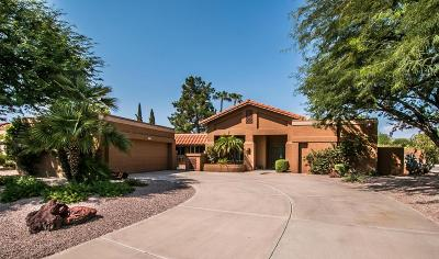Scottsdale Single Family Home For Sale: 10886 E Palomino Road