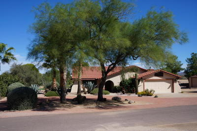 Wickenburg Single Family Home For Sale: 690 N Country Club Drive