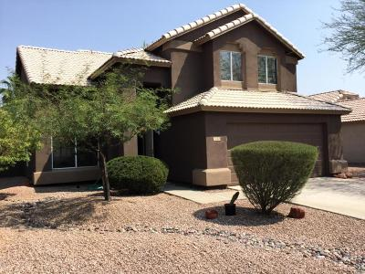 Chandler Single Family Home For Sale: 1163 N Robins Way