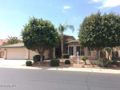Gilbert Single Family Home For Sale: 1480 W Laurel Avenue