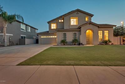 Gilbert Single Family Home For Sale: 3491 E Temecula Court
