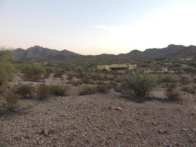 Goodyear Residential Lots & Land For Sale: 8600 S Litchfield Road