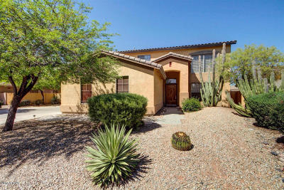 Chandler Single Family Home For Sale: 2294 E Tonto Place