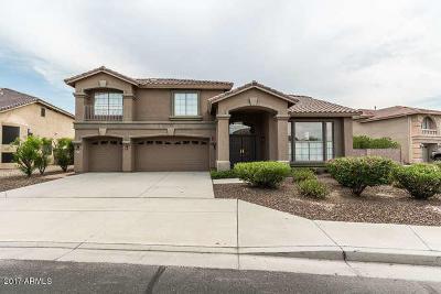 Litchfield Park Single Family Home For Sale: 13409 W Solano Drive