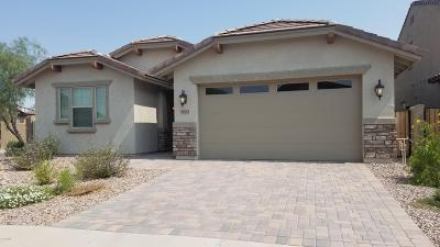 San Tan Valley Rental For Rent: 28273 N Welton Place