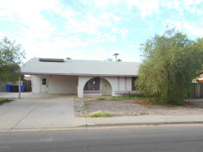 Mesa Single Family Home For Sale: 2054 W Pampa Avenue