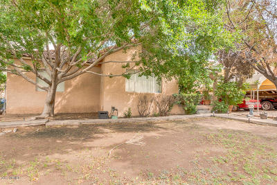 Tempe Single Family Home For Sale: 2422 E Apache Boulevard