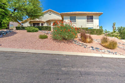 Fountain Hills Single Family Home For Sale: 13631 N Bittersweet Way