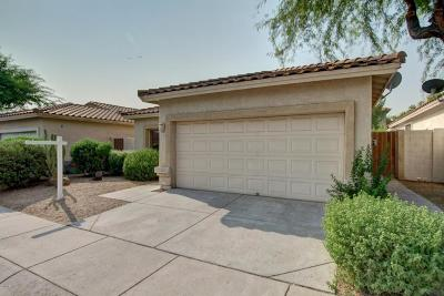 Tempe Single Family Home For Sale: 1055 E Susan Lane