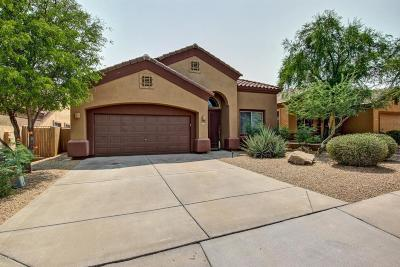 Fountain Hills Single Family Home For Sale: 15811 E Cactus Drive