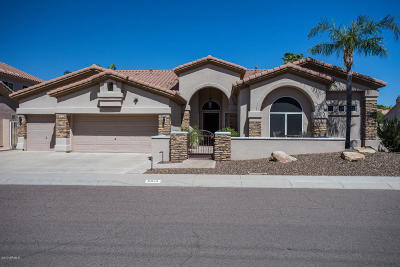 Scottsdale Single Family Home For Sale: 5344 E Anderson Drive
