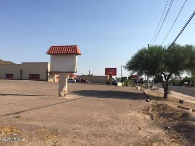 Residential Lots & Land For Sale: 12025 N 19th Avenue