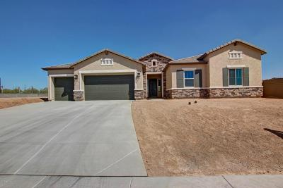 Cave Creek Single Family Home For Sale: 31321 N 54th Place