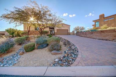 Fountain Hills Single Family Home For Sale: 10826 N Skyline Drive