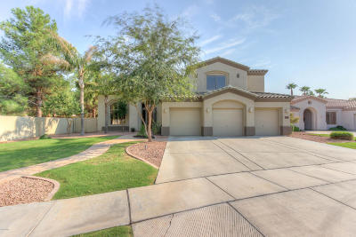 Chandler Single Family Home For Sale: 1901 W Bartlett Court