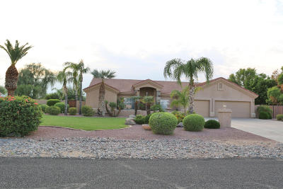 Peoria Single Family Home For Sale: 23842 N 95th Avenue