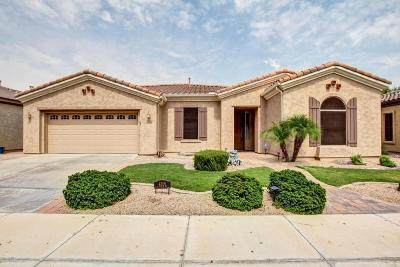 Gilbert Single Family Home For Sale: 4206 E Carob Drive