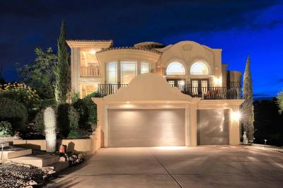 Fountain Hills Single Family Home For Sale: 16101 N Powderhorn Drive
