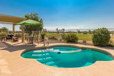 Pinal County Single Family Home For Sale: 81 S Agua Fria Lane
