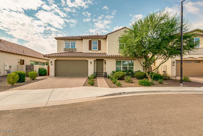 Chandler Single Family Home For Sale: 4277 E Yellowstone Place