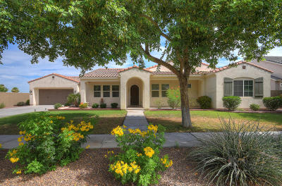 Phoenix Single Family Home For Sale: 2814 E Branham Lane