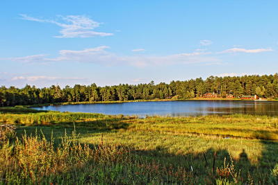 Lakeside Residential Lots & Land For Sale: 2650 State Route 260
