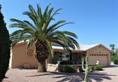 Chandler, Gilbert, Mesa, Tempe Single Family Home For Sale: 1152 S 82nd Place