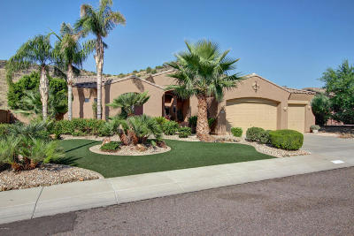 Phoenix Single Family Home For Sale: 4635 W Pokeberry Lane