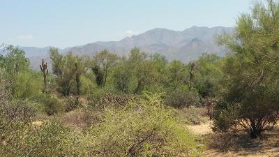 Rio Verde Residential Lots & Land For Sale: 170xx E Lowden Road
