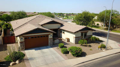 Chandler Single Family Home For Sale: 3771 E Tonto Place